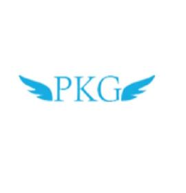 PKG CONSULTANCY – Tax Consultants CA Firm in Kalkaji, South Delhi