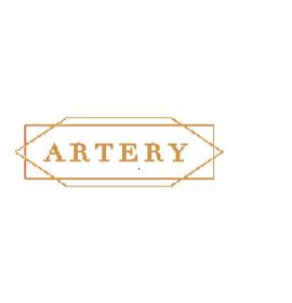Artery India